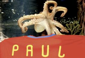 pulpopaul